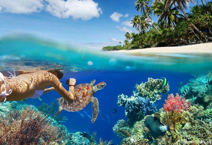 Jak wybrać aparat do robienia zdjęć pod wodą?